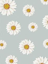 Daisy-Sims